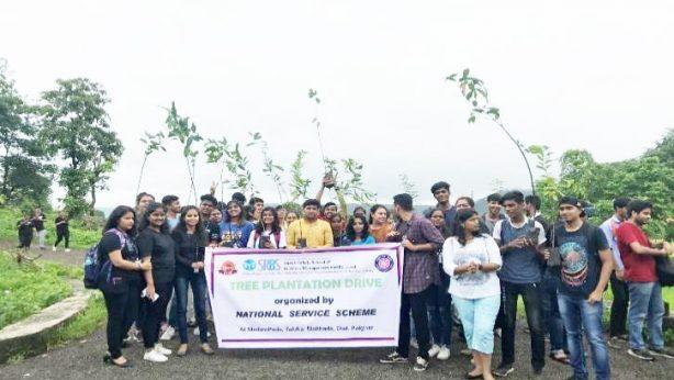 Report on Tree Plantation Program